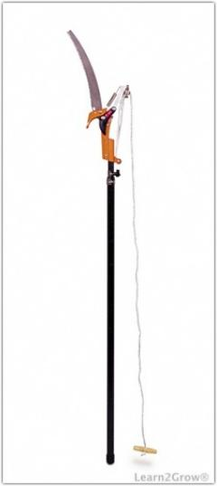 Rental store for SAW, PRUNING   CLIPPER 10 POLE in Brownsburg IN